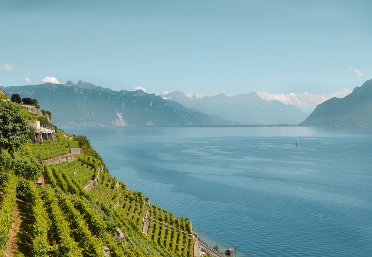 A night in the heart of Lavaux
